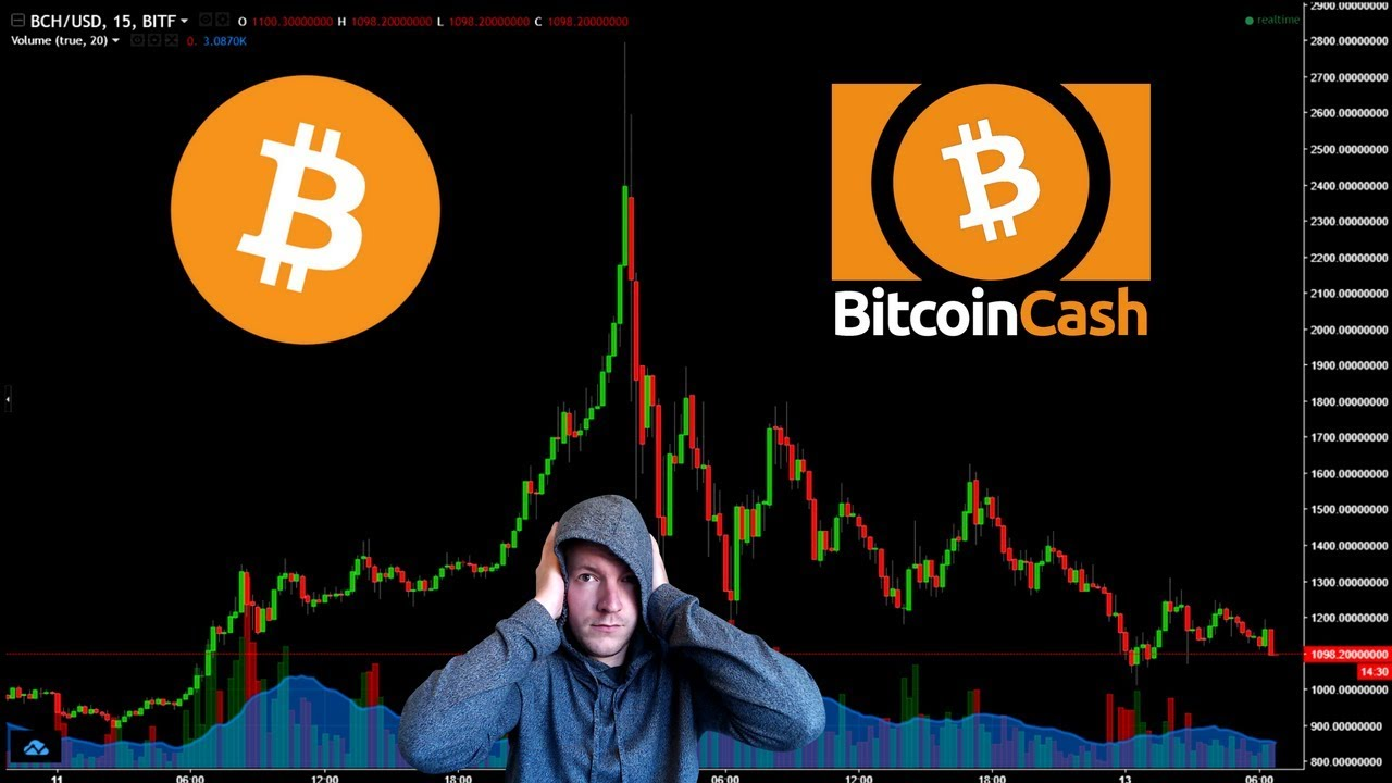Bitcoin Cash vs Bitcoin: Which one is better for Investment?