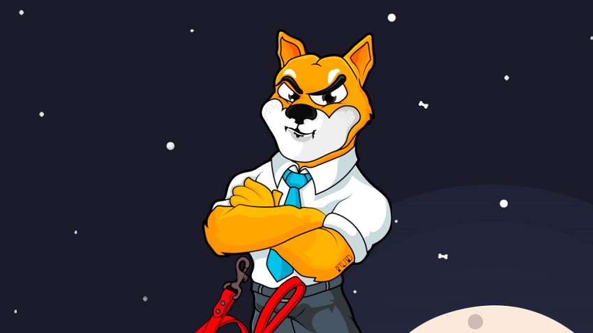 SHIBA INU Meme Token Price Prediction: Why You Need to Invest in this Coin?