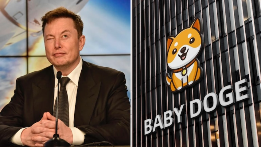 What is BabyDoge Coin? Is Elon Musk Really Supporting this Coin?